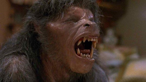 american-werewolf-london-e1585840708232-600x338