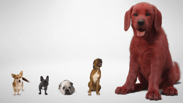 Clifford-The-Big-Red-Dog-First-Look-Paramount-Pictures-0-10-screenshot-600x338