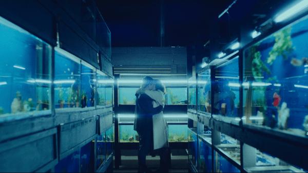 Little-Fish-1-600x338
