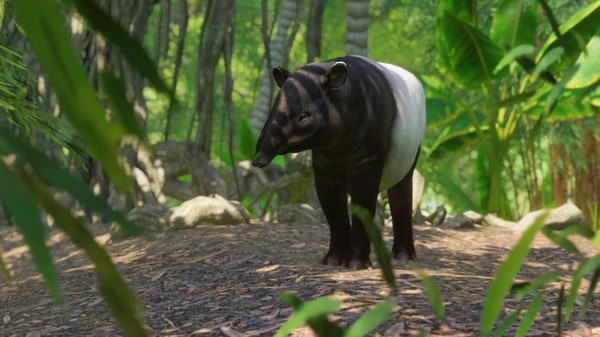 South-East-Asian-Animal-Pack-3
